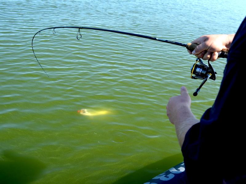Вопросы по ловле рыбы